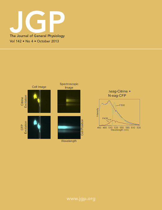 JGP Journal Cover